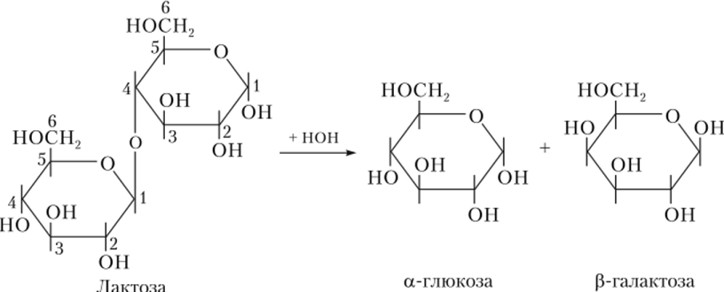 Схема гидролиза лактозы