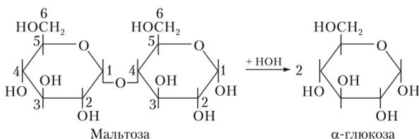 Схема гидролиза мальтозы
