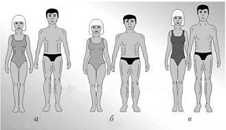 Понятие телосложения и характеристика его основных типов доклад 2271