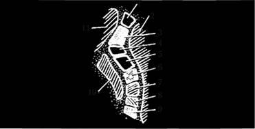 Расположение проводящих путей во внутренней капсуле