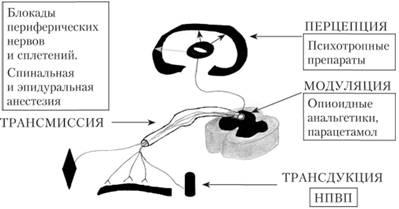usilenie-analgeticheskogo-effekta-preparata