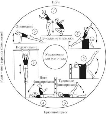 Средства физического воспитания Методы физического воспитания  На каждой из них студент выполняет упражнение например подтягивание приседание отжимание прыжки упражнение на пресс и т д и проходит круг от одного