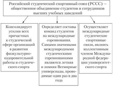 Реферат система спортивных соревнований 1594