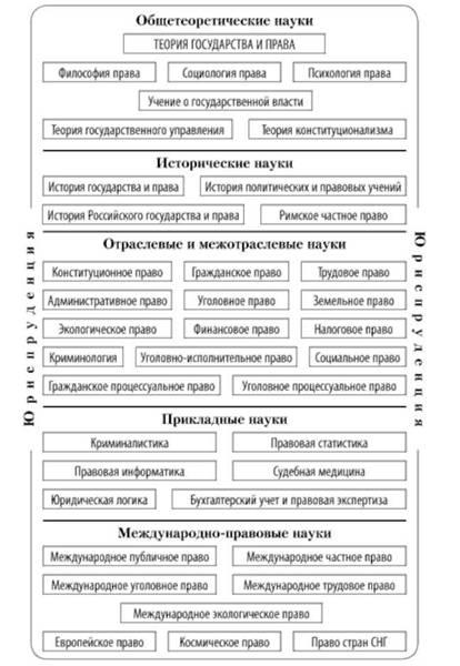 Место тгп в системе юридических наук схема