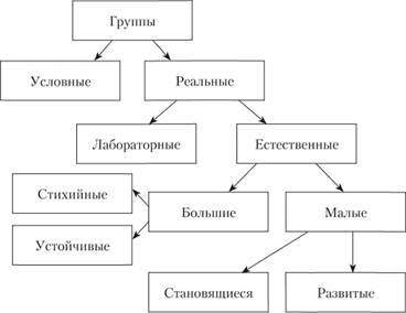 Классификация групп (по Г. М. Андреевой)