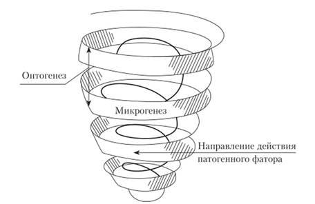 Структура нарушенного развития с учетом микро- и онтогенеза