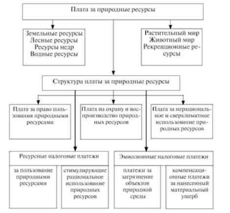 Виды и структура платежей за