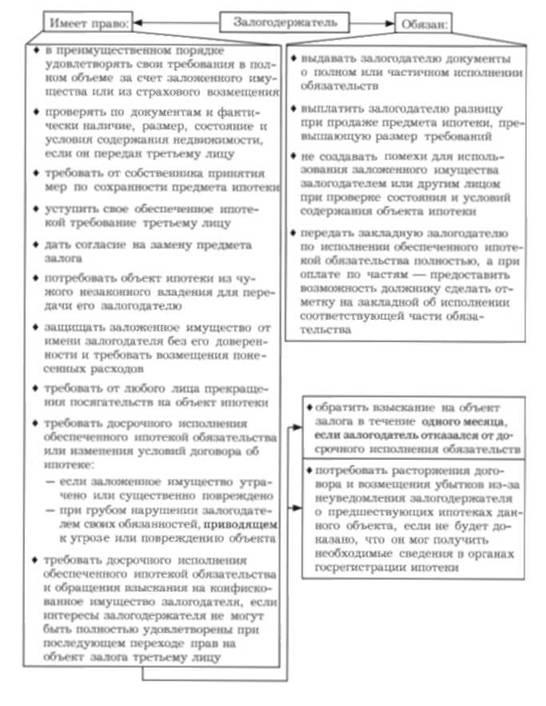 Основные права и обязанности