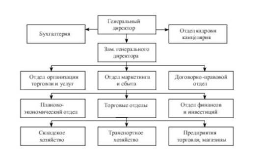 структура торгового дома