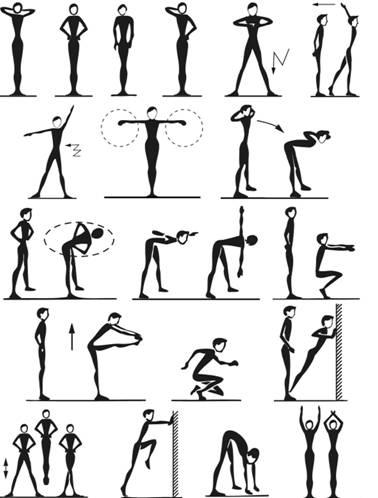 физические упражнения для сжигания жира