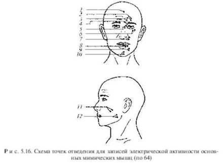 активности групп мышц лица