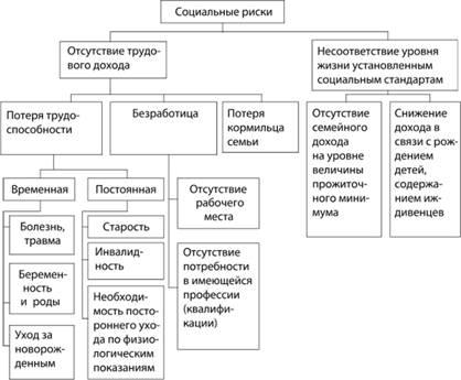 Классификация видов
